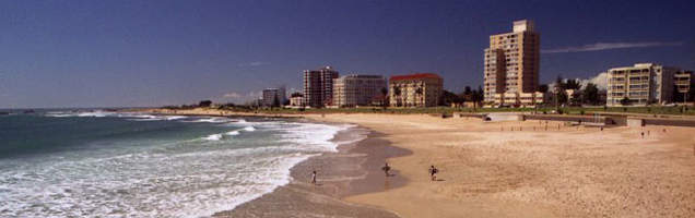 English in Port Elizabeth with Language International
