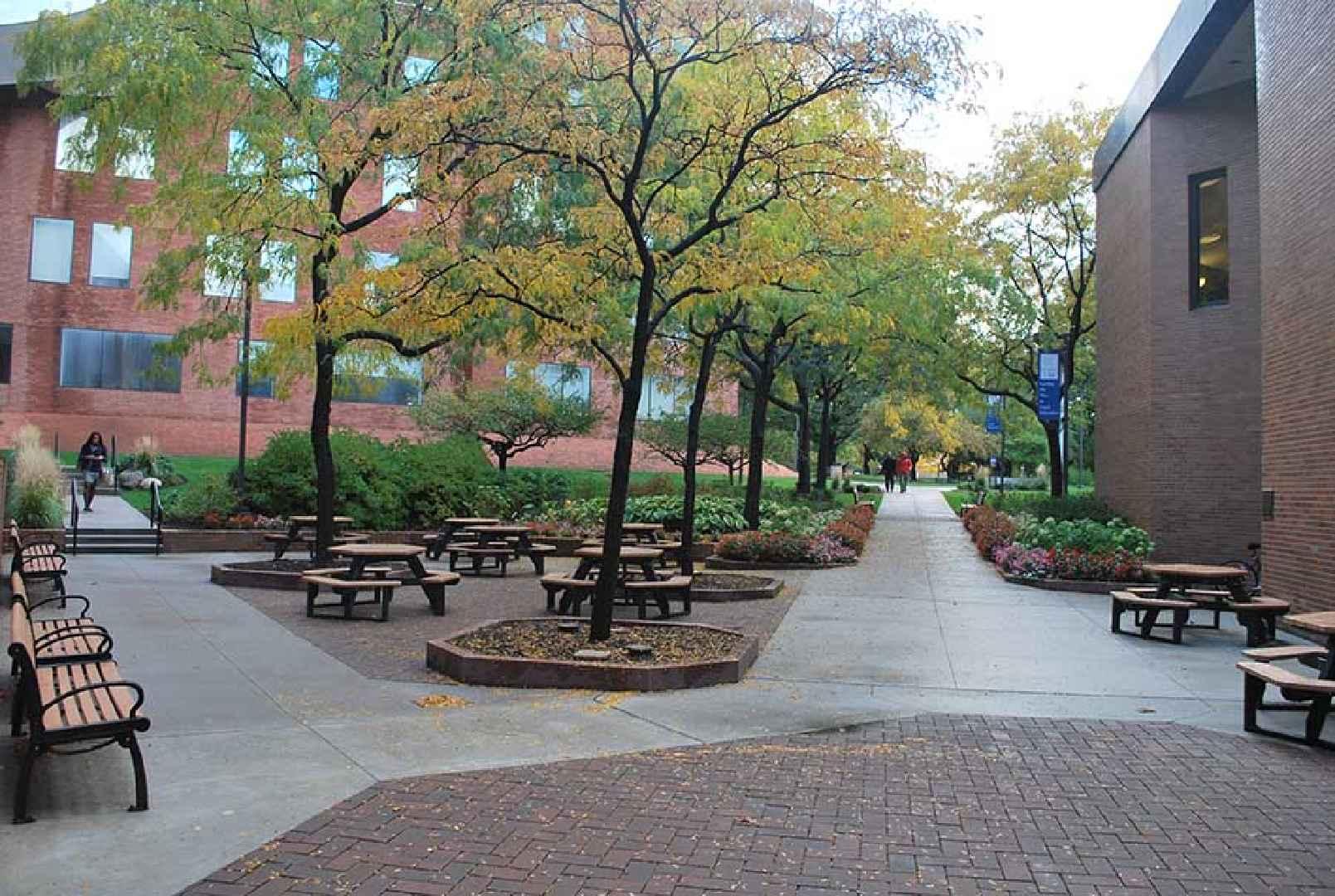 ELS Language Centers at Case Western Reserve University
