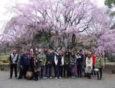 在东京的日语学校: System Toyo Gaigo Japanese Language School