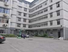 Chinese Mandarin schools in Shanghai: Mandarin Inn Chinese Language & Culture Center