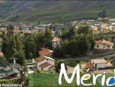 Ecoles d'espagnol à Mérida: Executive Total Immersion Spanish Course